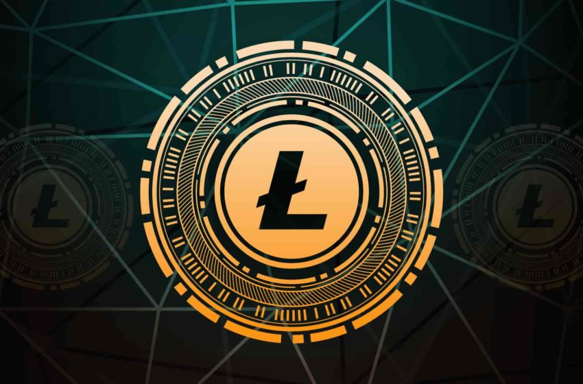 Litecoin Records Huge Volatility Since the Starting of this Year