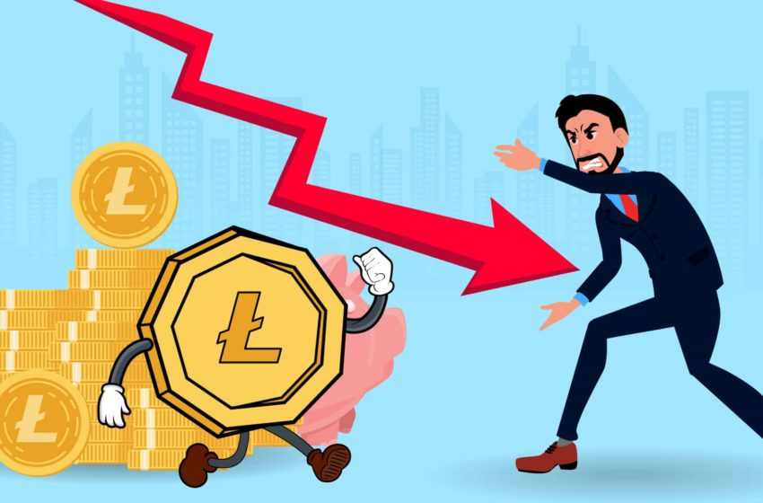 Litecoin Price Analysis: LTC Price Plunged Almost 50% in 30-days Run